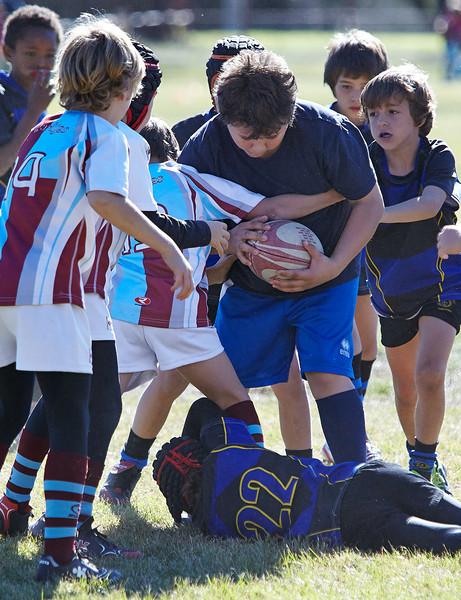 1202_09-Nov-13_RugbyOrcasitas.jpg