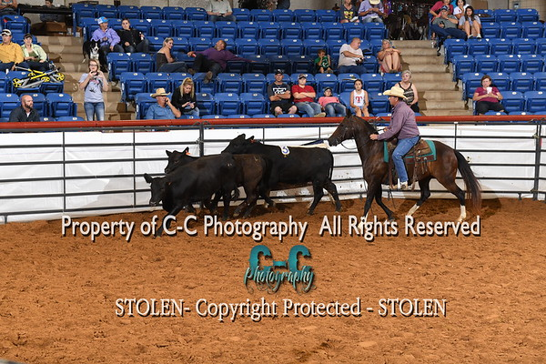 1-200 Pen 1-2 RSNC Finals 2018 Fort Worth TX