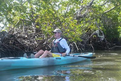 9AM Mangrove Tunnel Kayak Tour - McEwan & De Vos