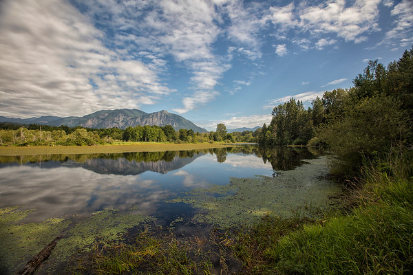 A Year's Reflection of Mount Si