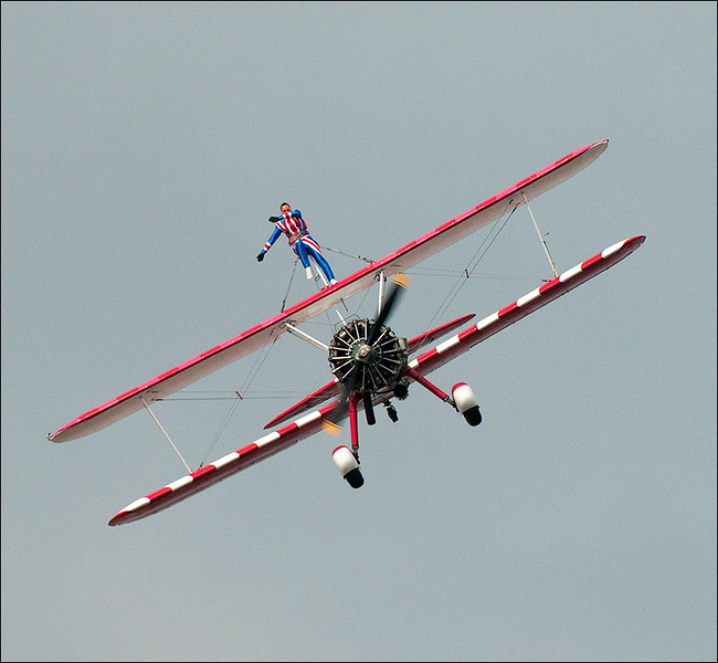 RH Wing Walker very highly commended.jpg