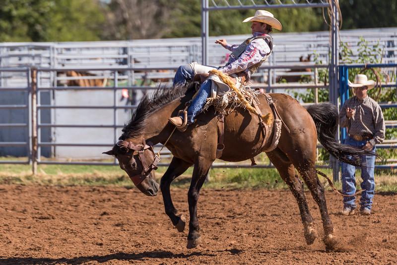 Rodeo-40.jpg