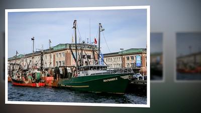 2017 Cruise- Boston to Portland Video
