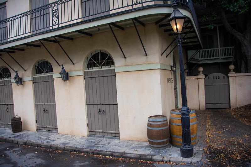 Disneyland-12.jpg