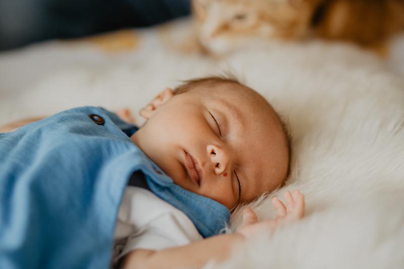 bash-newborn-2.jpg