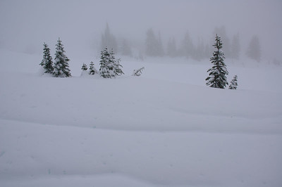 Mt. Rainier - 11.13.05