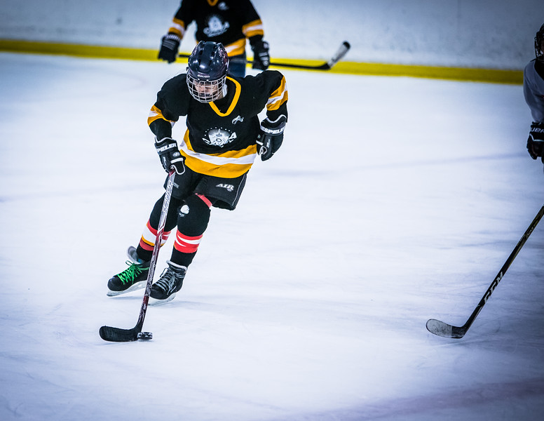 Bruins2-410.jpg