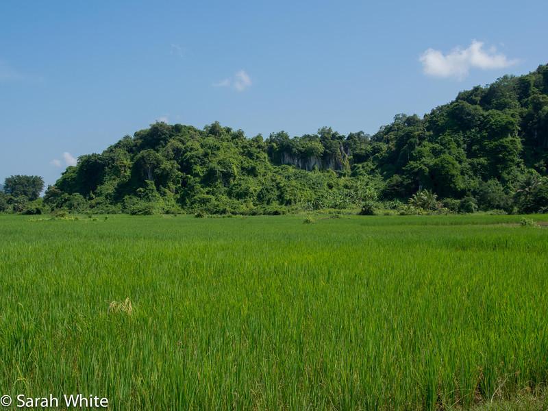 131103_Kampot_563.jpg