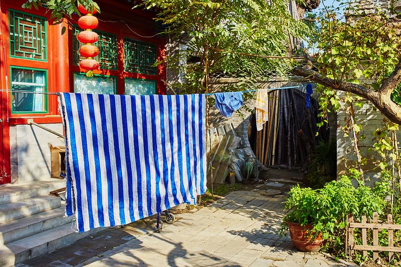 IMG_3703 China.jpg