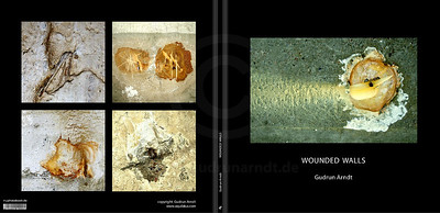 Wounded Walls Book