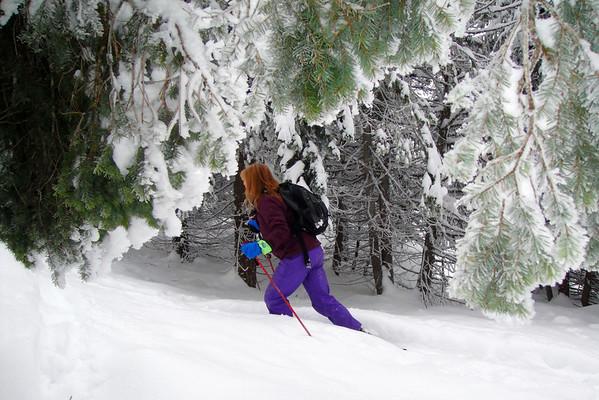 2009-12-31 Seven Summits Trail