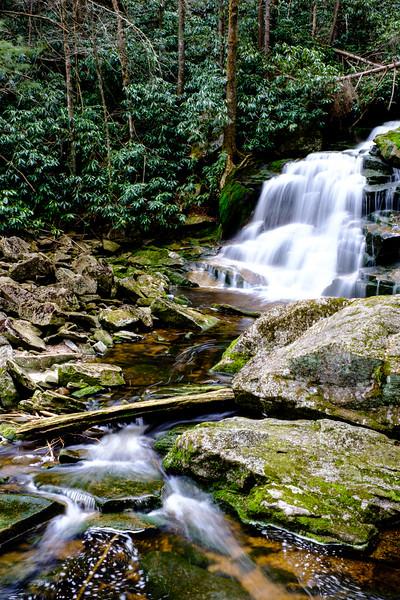 20180504-05 Blackwater Falls State Park 022.jpg