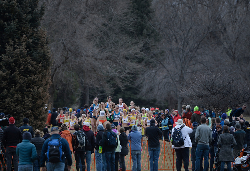 . Elite athletes on course for the Open Women\'s 8K USA Cross Country Championship at the Flatirons Golf Course Saturday afternoon, February 15, 2013. (Photo By Andy Cross / The Denver Post)