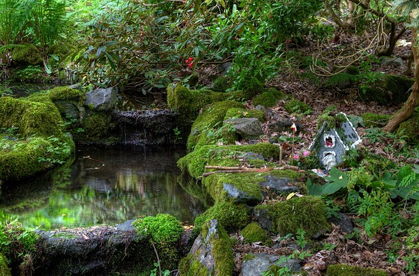 Milner Gardens and Woodland