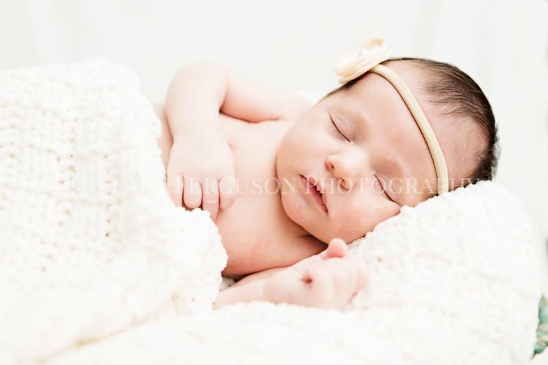 Hillary_Ferguson_Photography_Carlynn_Newborn201.jpg