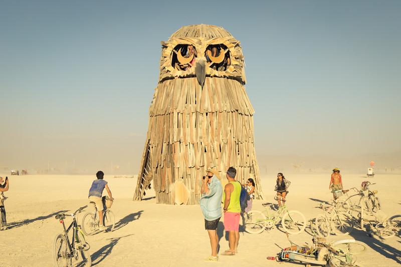 The Owl.jpg