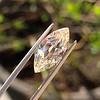 2.86ct Antique Marquise Cut Diamond, GIA N VS1 5