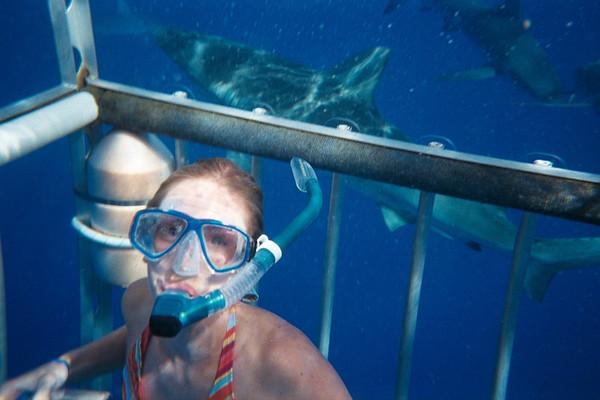 Shark Tank 2004