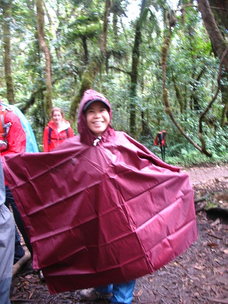 1494231898Mt-Kilimanjaro-9.jpg