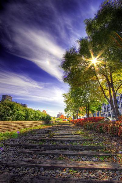 Tracks to sunlight