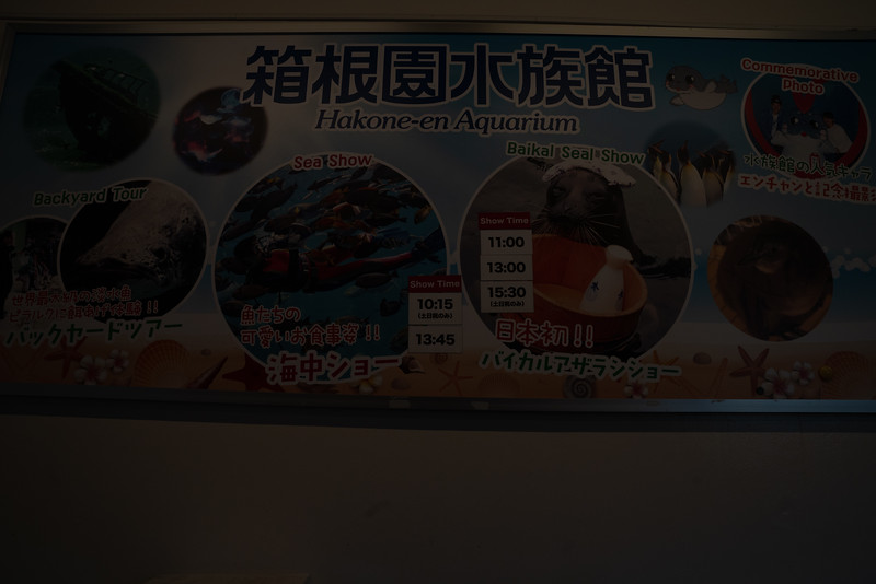 20190411-JapanTour-5447.jpg