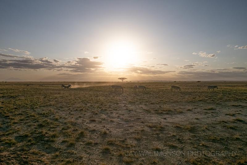 Jay Waltmunson Photography - Kenya 2019 - 167 - (DXT19429).jpg