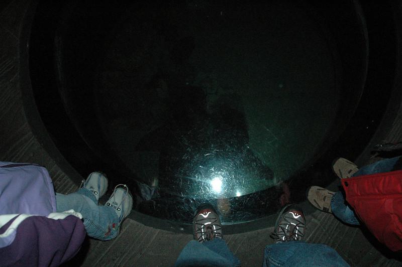 Pictures 05 11-20-05 thru 05-03-06 118.JPG
