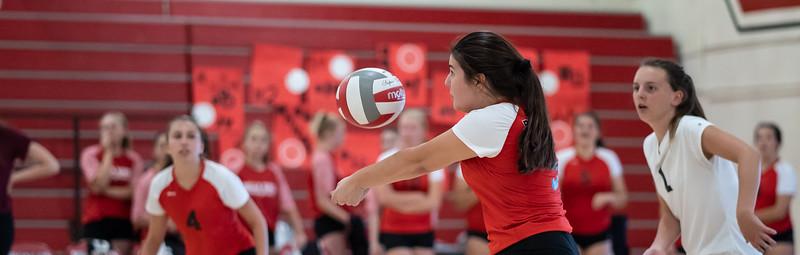 Bella Vista vs Roseville Volleyball