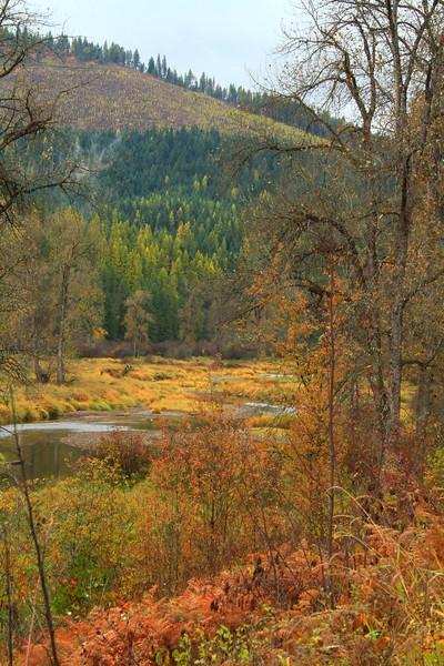fall 2019 st maries river-1677.jpg