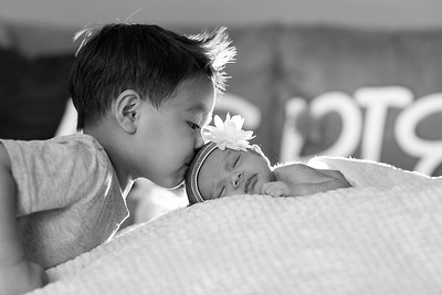 Newborn Shoot // Averie Joy