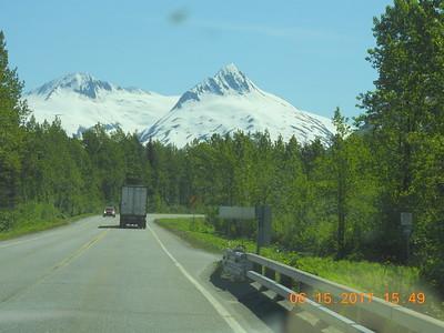 PG Puppies - Trip to Alaska