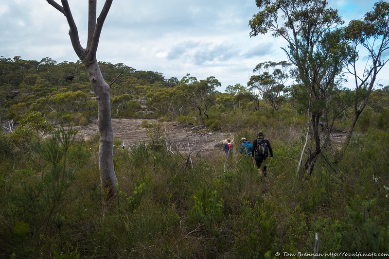 Heading for Mt Murray Anderson