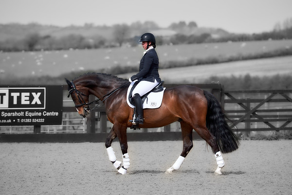 Sparsholt Dressage - April 2019