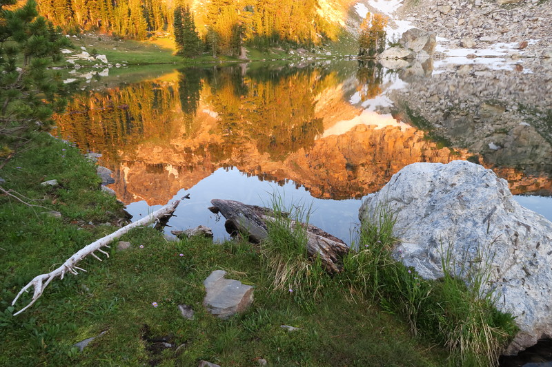 Reflections at Holly Lake