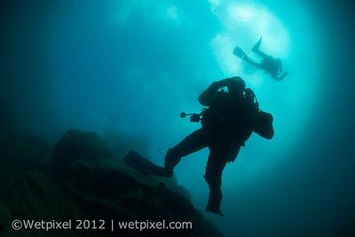 120512-D800 underwater 2-0849
