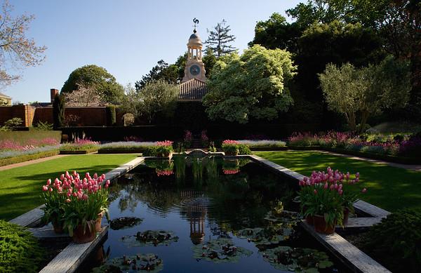 Filoli Gardens  04-03-15