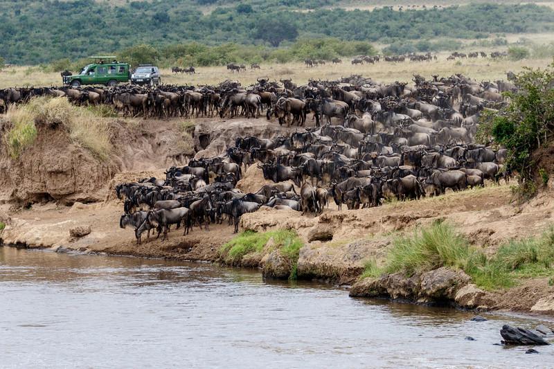 Kenya 2015-05722.jpg