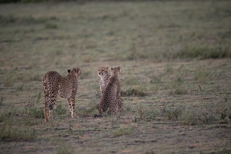 Tanzania_Feb_2018-117.jpg