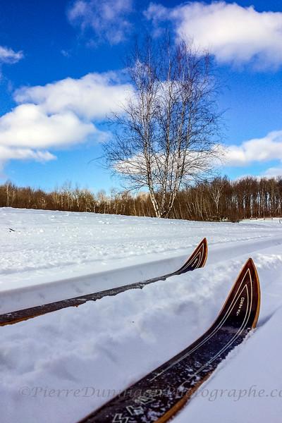 ski de fond  amis des sentiers