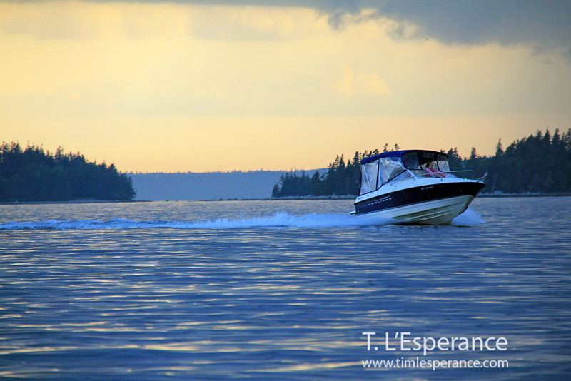 Bayliner with pink passenger... electric blue sky/ water on St. Margaret's Bay.