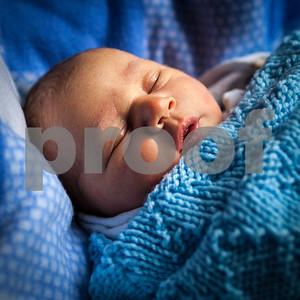 Baby Stewart