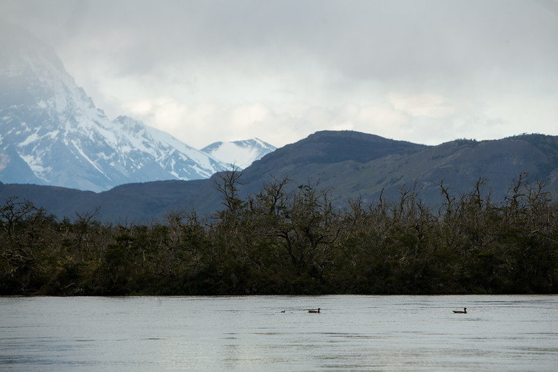 patagonia-1138.jpg