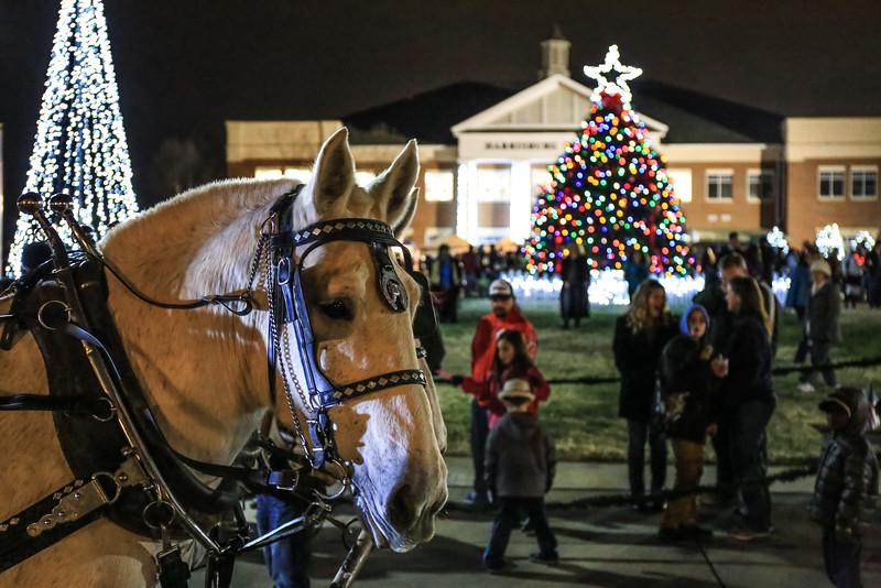 2014 Dec - Harrisburg Christmas Tree Lighting-0165.jpg