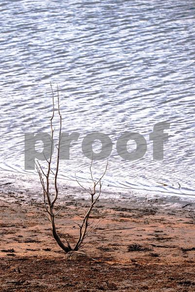 shore based.jpg