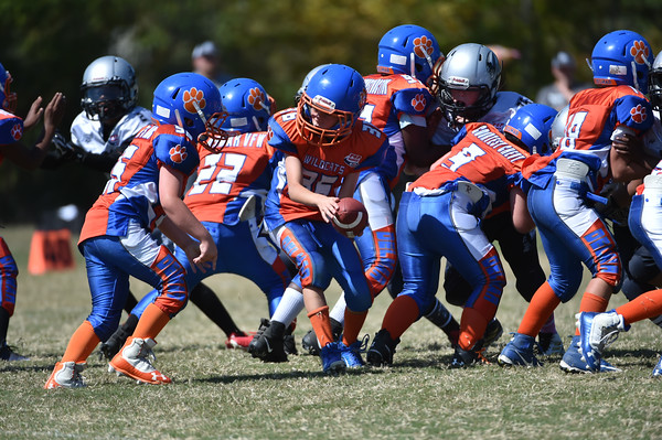 Delmar Pop-Warner Football & Cheer 2019