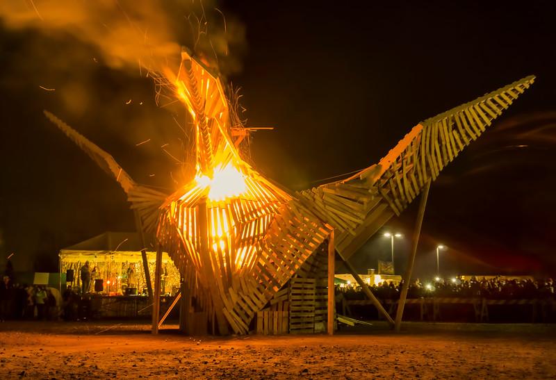 phoenixville firebird - firebird soars(p).jpg