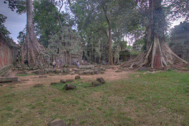 Landscape and trees at Ta Prohm inside Angkor Wat