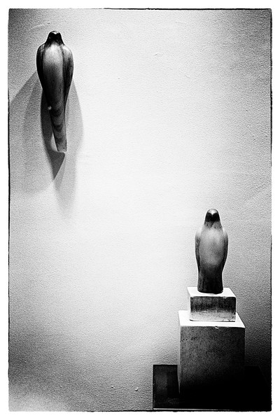 19-window-display-of-statuettes-35-Biogon.jpg