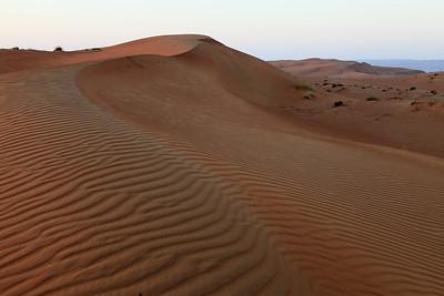 20130212 Wahiba Sands