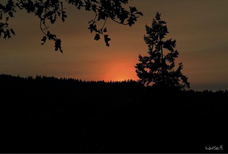 2018906.ml.sunset andshadows{